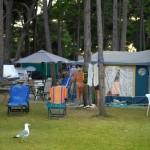 Camp Medulin (6)