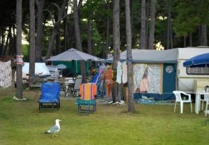 Camp Medulin