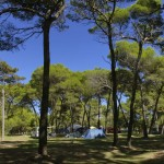 Camp Medulin Istria (3)