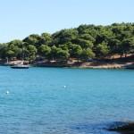 Camp Tesalera Istria (2)